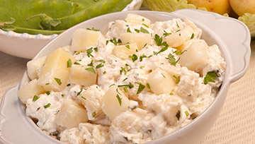 Salades fraîches